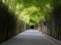 3.4 Pathway